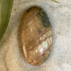Lake Michigan Stone Cabochon