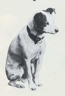"""A photograph of Nipper a stray found by Mark Barraud in 1884 who was the model for Francis Barraud's painting """"His Master's Voice"""""""