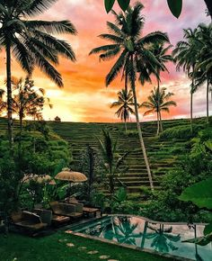 We're in heaven ( sung in the tune of heaven by dj sammy )     Be Bali Stay - Ubud