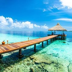 Enjoy fun-filled days with holidays to Maldives from Home and Away Holidays. Our cheap holiday packages to Maldives help you save big. Maldives Holidays, Cheap Holiday, Crystal Clear Water, Home And Away, Garden Bridge, Surfing, Tropical, Ocean, Outdoor Structures