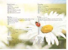 chore chart adults, adult chore chart, daili chart, adult chores chart, chore charts
