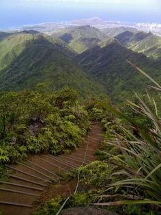 Wiliwilinui Ridge Trail. Oahu, Hawaii