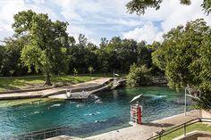 The glorious Barton Springs Pool in Austin, Texas!