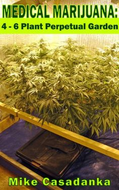 Medical Marijuana: 4 - 6 Plant Perpetual Garden It examines how the patient/grower continually adds a new plant as a mature plant is harvested for its medicine; and how growing only two big plants yields just as much as having a large number of small plants. Whether the plant limit is 4, 5, or 6 plants, the patients still produce enough on their own to keep a constant supply of medicine and yet stay within the permitted dry weight limitations.