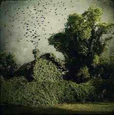 artistic surreal photomanipulation by sarolta ban 30
