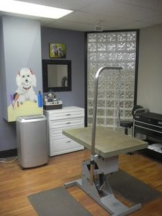 dog grooming shop design ideas - Google Search