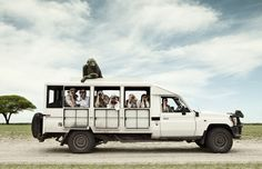 Monkey sitting on top of truck with safari tourists