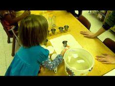 Pre-Kindergarten Hands-On Activities