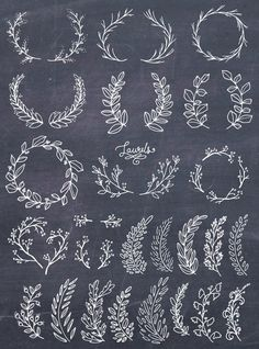 Lettering Fonts Discover Laurel Wreath Clipart Wreath Clip Art Laurel Wreath PNG Botanical Clipart Hand Drawn Clip Art Floral Wreath Vector PNG Commercial Use Brosses Photoshop, Photoshop Brushes, Art Floral, Design Set, Web Design, Pattern Design, Logo Design, Border Design, Lettering Design