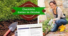 Checkliste Garten im Oktober: Pflanzen, ernten, überwintern und weitere Gartenarbeiten
