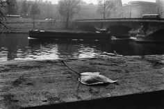 Sergio Larrain, Paris, 1959. (via:litverve)