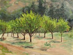 """Afternoon in John Muir's Plum Orchard by Linda Apriletti Oil ~ 9"""" x 12"""" #oilpainting #orchard #landscape"""