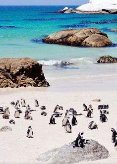 Strand in Kaapstad.