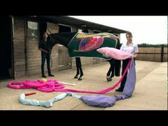 Dengie nutritionists Katie Williams and Claire Akers take you on a tour of the horse's digestive system using a life size model.