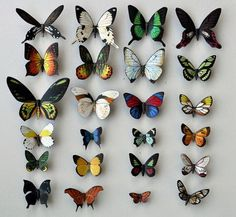 Butterfly Moth Magnets, Set of 24, Insects, Refrigerator Magnets, Kitchen Magnets, Handmade