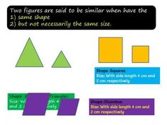 NCERT Solutions for Class 10th Maths Chapter 6 Triangles Exercise 6.1 Question 1