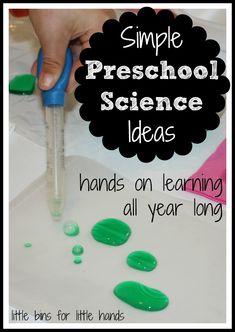 preschool-science-ideas.jpg 730×1,030 pixels