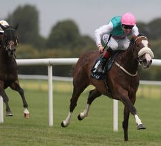 Tested (GB) 2011 Ch.f. (Selkirk (USA)-Prove (GB) by Danehill (USA) 1st Fairy Bridge S (IRE-G3,7.5f,Tipperary)