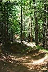 Image result for sentier vélo montagne