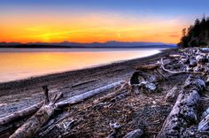 Lincoln Park Seattle | ... ; photograph by Jason Hoover. Beach in Lincoln Park in West Seattle