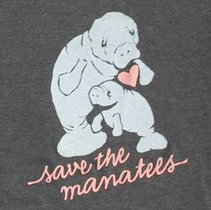 <3 Manatees!  For you Jess :)