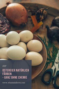 Ostereier färben mit Farben aus Pflanzen & Gewürzen. Weiterlesen auf dem Blog... #ostereier #pflanzenfarbe #ostern Baby Led Weaning, Blog, Posts, Breakfast, Green Eggs, Morning Coffee, Messages, Blogging