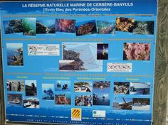 Le Sentier Sous-Marin de Cerbere-Banyuls, Cerbere: See 117 reviews, articles, and 38 photos of Le Sentier Sous-Marin de Cerbere-Banyuls, ranked No.1 on TripAdvisor among 6 attractions in Cerbere.