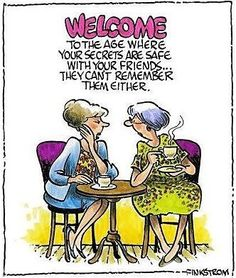 Welcome to the age where your secrets are safe with your friends they can't remember them either funny boomer humor adult senior Humor Viejo, Funny Cartoons, Funny Jokes, Cartoon Humor, Silly Jokes, Menopause Humor, Old Age Humor, Aging Humor, Senior Humor