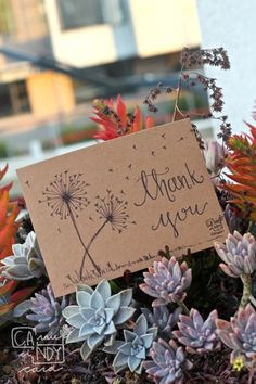 """""""Dandelion"""" thank you card hand-drawn and handwritten by CA.NDY Card on cardboard paper."""