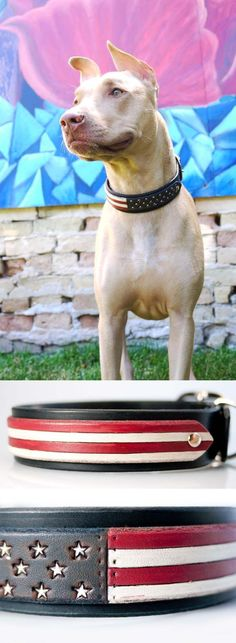 4th of July Dog Collar handmade in Wisconsin USA, tooled, stamped, and painted for your dog's fourth of July outfit