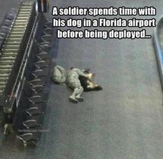 Imagine going to war & wondering if you'll ever see your family (which includes your dogs) and friends again. Please keep our military men, women, their personal family dogs and military working dogs in in your prayers.