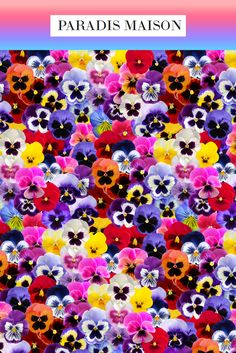 Pansy Flower Fabric Swatch from Paradis Maison Pillows, fabric & decor