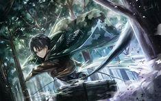 Lataa kuva Shingeki ei Kyojin, Levi Ackerman, anime merkkiä, Japanilainen manga, päähenkilö, metsä