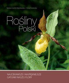 https://www.gandalf.com.pl/b/rosliny-polski-b/