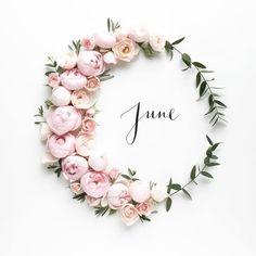 """Gefällt 561 Mal, 3 Kommentare - Perfect Wedding Magazine (@perfectweddingmag) auf Instagram: """"Hello June! @humphreyandgrace #wreath #florals #flowers #june #summer #pink #pretty"""""""