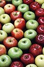 MSU News - Only the pluckiest survive: Apple varieties in Montana, Sidebar: Apple recipes