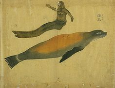 mermaid alongside sea lion