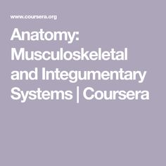 Anatomy: Musculoskeletal and Integumentary Systems | Coursera Muscles Of Upper Limb, Head Muscles, Muscles Of The Neck, Musculoskeletal System, Endocrine System, Respiratory System, Skeletal Muscle Anatomy, Gross Anatomy