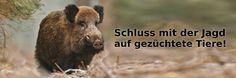 Schluss mit der Jagd auf gezüchtete Tiere