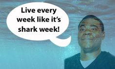 Shark Infested Social Media: How Discovery Built Anticipation for Shark Week ---------------------- Tracy Jordan ftw.
