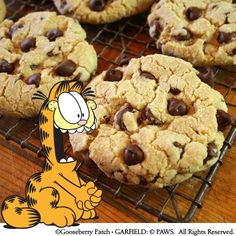 Gooseberry Patch Recipes: Giant Chocolate Chip Cookies from Garfield...Recipes with Cattitude  (Visit @Garfield for more feline fun!)