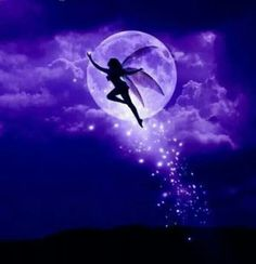 Fairy.....