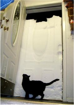 I see your frozen lock and your North Dakota winter and raise you a snow storm 33 miles above the arctic circle.  (…plus kitty.)