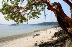 Chocolate Beach, (Third Sister Island), off Ganges Harbour, Salt Spring Island, B. Lake Beach, Beach Fun, Salt Spring Island Bc, Ocean Pictures, Ocean Pics, Spring Aesthetic, Blue Aesthetic, Canada Destinations, Island Beach