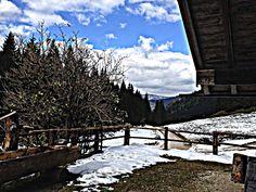 Auf dem Weg zur Kuehrointalm am Watzmann Koenigsee Berchtesgadener Land - 8