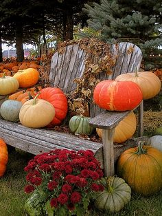 pumpkins on a weathered chair for outdoor fall decor