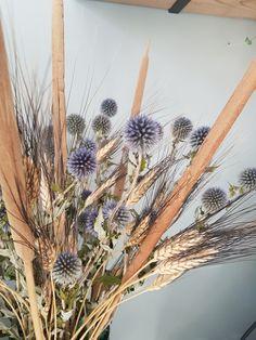 Droogbloemen . Gedroogde bos,  héél naturel en duurzaam, Distels, Triticum, Thypa, Lisdodde..  Te koop bij de Vintage Blomm's in Lisse of kijk online.