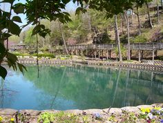 Blue Springs is a must see when visiting.  Great place to have a party or wedding as well.