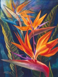 Transparent Watercolor: Bird of Paradise Workshop-Paradise, Bird, Watercolor, Transparent, Workshop Watercolor Bird, Watercolor Paintings, Watercolor Portraits, Watercolor Landscape, Abstract Paintings, Watercolours, Exotic Flowers, Tropical Flowers, Exotic Birds