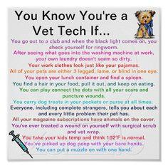 vet tech life